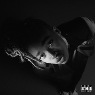 LP LITTLE SIMZ ‎– GREY AREA (2019) NOVO/LACRADO