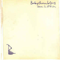 CD BABYSHAMBLES - DOWN IN ALBION (USADO)