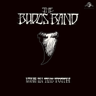LP THE BUDOS BAND - LONG IN THE TOOTH (NOVO/LACRADO) IMP