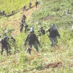 Trabajadores del Proyecto Corah erradicaron 4,460 hectáreas de coca ilegal este año