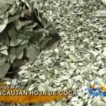 Incautan 250 kilos de hoja de coca en Tingo María