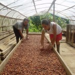 PDA y gobierno regional lideran desarrollo alternativo en Ucayali