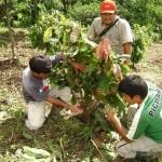 Autoridades ediles y funcionarios saludaron a agricultores del VRAE en el Día del Campesino