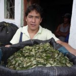 Dirigente del Monzón, Eduardo Ticerán, avizora fracaso de huelga indefinida de cocaleros