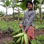 INIA presentará nuevo sistema agroforestal para la Amazonía