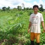 Región Ucayali ejecuta 16 proyectos productivos por más de 16 millones de soles