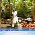 Comunidad de José Carlos Mariátegui se forja un futuro prometedor gracias al cacao