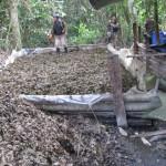 Intervienen mega laboratorio del narcotráfico entre cultivos de coca ilegal en Aucayacu, Huánuco