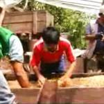 Comunidad Santa Rosa de Tealera goza del Fenómeno del café de exportación