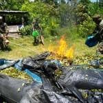 Destruyen otros cuatro laboratorios del narcotráfico en bastión senderista de Bolsón Cuchara