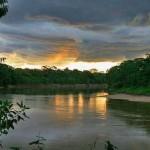 Se incrementan cultivos de coca ilegal en Reservas de Tambopata y el Bahuaja Sonene