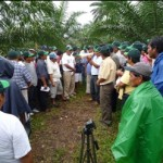 Realizan foro de promoción de vida lícita y medio ambiente en Tocache