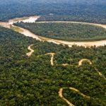 CIDH y ONU expresan preocupación ante ley sobre carreteras en la Amazonía