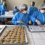 Huánuco: Instruyen en elaboración de hamburguesas y nuggets de peces amazónicos