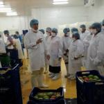 Huánuco: Productores recorren experiencias exitosas en el agro