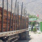 Implementan aplicativo para el control de las guías de transporte de madera
