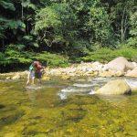 San Martín: Promueven iniciativas sobre uso eficiente del agua