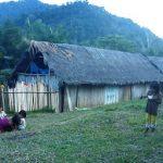 Amazonas: Promueven imprescripción de casos de docentes violadores