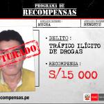 Capturan a requisitoriado por tráfico ilícito de drogas en el Vraem