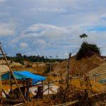 Madre de Dios: Comunidades nativas reforestarán bosques afectados por minería informal