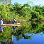 Presentarán proyecto para asegurar protección de áreas naturales amazónicas