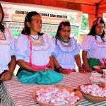 San Martín: Incrementan productividad promedio del sacha inchi en un 85.9%