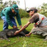 Vraem: Unas 800 familias se benefician con acciones sanitarias del Minagri