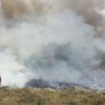 Bomberos extinguen incendio forestal ocurrido en Tumbes