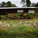 Minagri premiará a mejores productores agrarios de la región San Martín