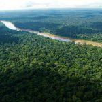 Perú posee 42 tipos de bosques en costa, sierra y selva