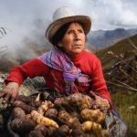 Productos andinos son de alto valor proteíco y previenen enfermedades