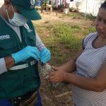 Ucayali: Atienden reporte de notificación de enfermedades en aves