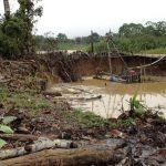 Identifican ecosistemas degradados en Madre de Dios