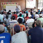 Capacitan a más de 1 600 familias cacaoteras del Alto Huallaga