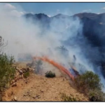 La Libertad: Bomberos extinguen incendio forestal en Huamachuco
