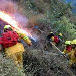 En 50% se redujo hectáreas afectadas por incendios forestales en Áreas Naturales Protegidas