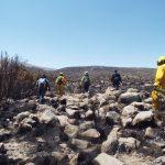 Evalúan daños causados por incendio forestal en Arequipa