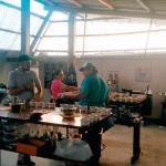 Realizarán I Feria de Cafés Especiales en Amazonas