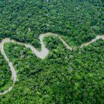 Siete países presentarán iniciativas exitosas en áreas protegidas amazónicas