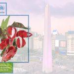 Ministros debatirán agenda ambiental para América Latina y el Caribe