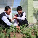 Arequipa: Instalarán 60 biohuertos familiares en distrito de Majes