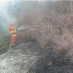 Extinguen incendio forestal en La Libertad y Lambayeque