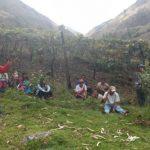 Huánuco: Capacitarán a productores sobre uso de guano de isla