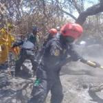 Lambayeque: Prosiguen acciones para sofocar incendio forestal en Bosque de Pómac