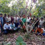 Proyecto de cacao orgánico beneficia a comunidades en Satipo