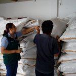Ucayali: Certifican más 20 toneladas de semilla forrajera para exportación a India