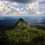 Campaña de U$1 000 millones para conservar el 30% del planeta para el 2030