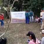 Ucayali: Capacitan a técnicos en manejo de plagas de camu camu