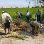 Arequipa: Velarán por cumplimiento de la veda del camarón en el río Majes