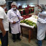 Inspeccionan establecimiento de procesamiento primario de plátano en Ucayali